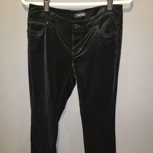 White House Black Market velvet pants